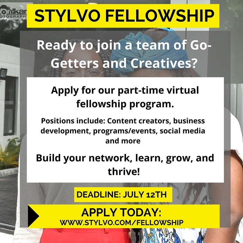 stylvo fellowship